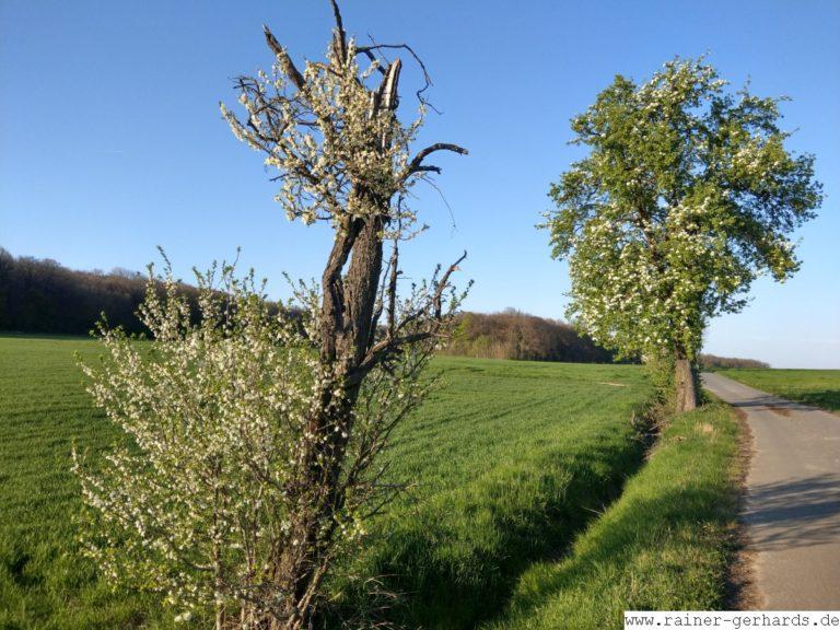 Landschaft an Ostern
